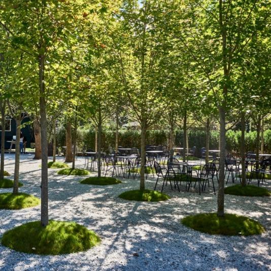 The Shade Garden at Valley Rock Inn & Mountain Club