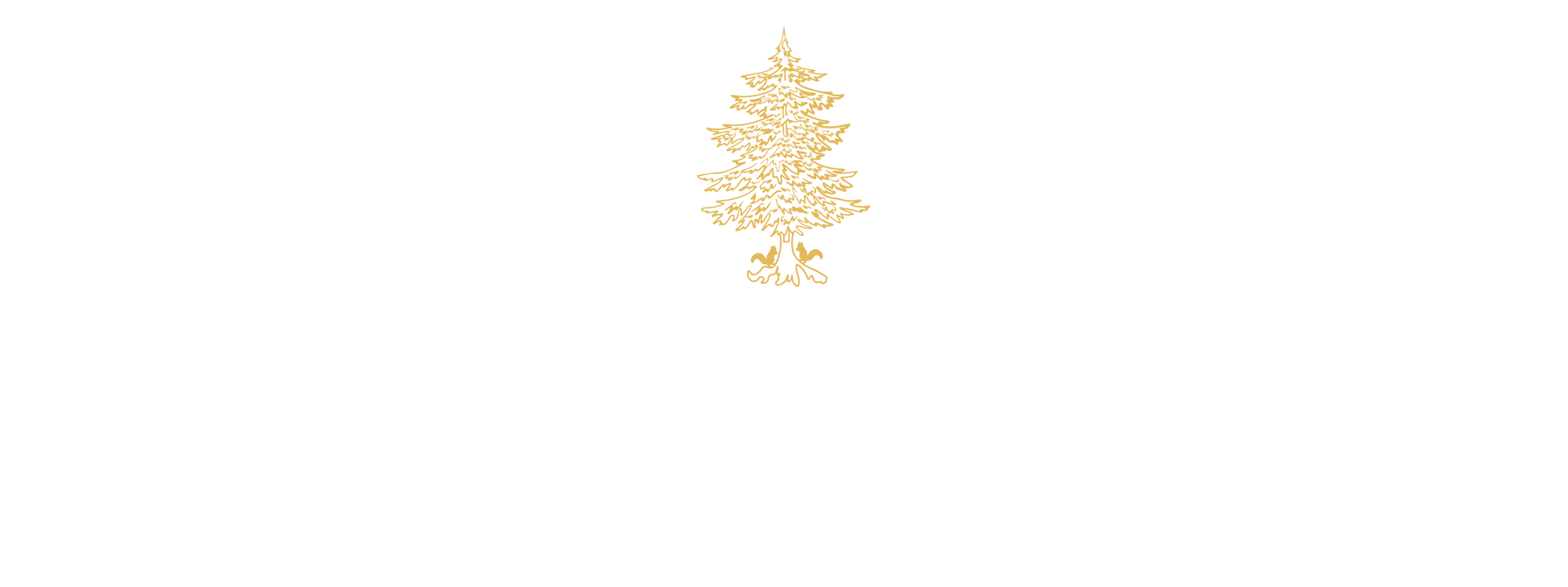 Valley Rock Inn