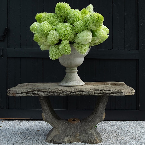 Large bouquet of hydrangeas in an urn on a stone table
