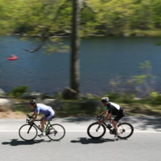 Road bikes in Harriman State Park